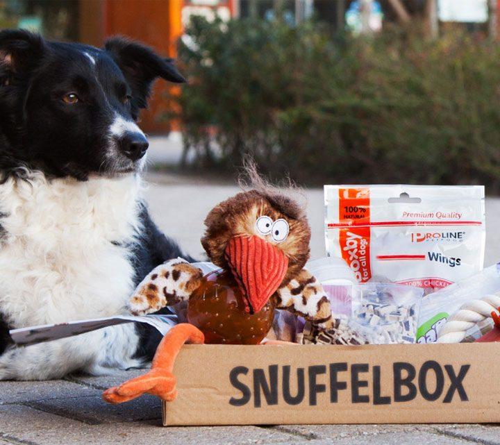 Honden verrassingsbox